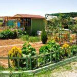 Kocaeli hobi bahçeleri